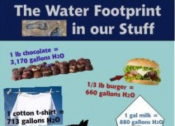 The Water Footprint in Our Stuff