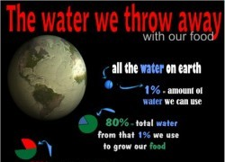 The Water We Throw Away In Our Food