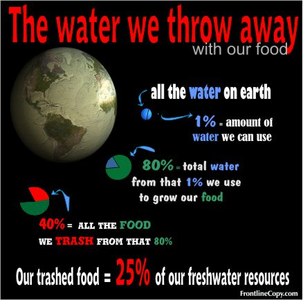The wasted water in our trashed food