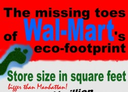 The missing green toes of Walmart's eco-footprint